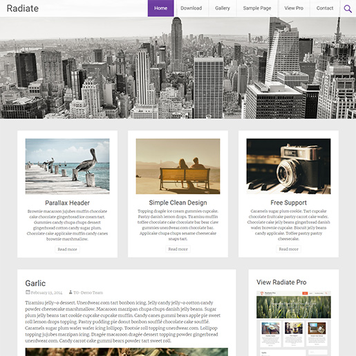 wordpress themes for artists - radiate