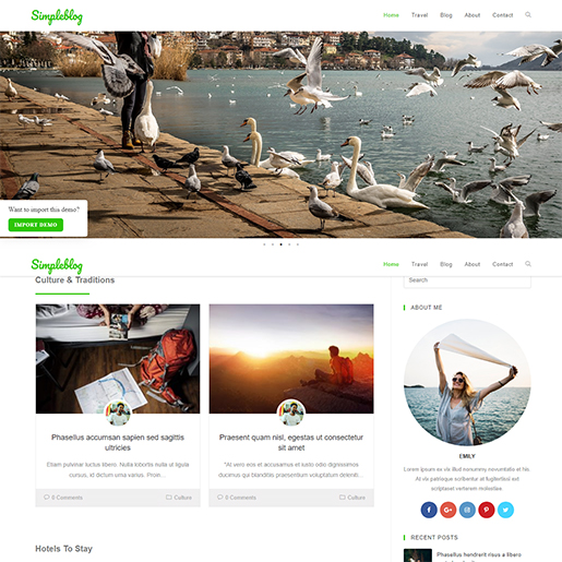 WordPress Travel theme - OceanWP