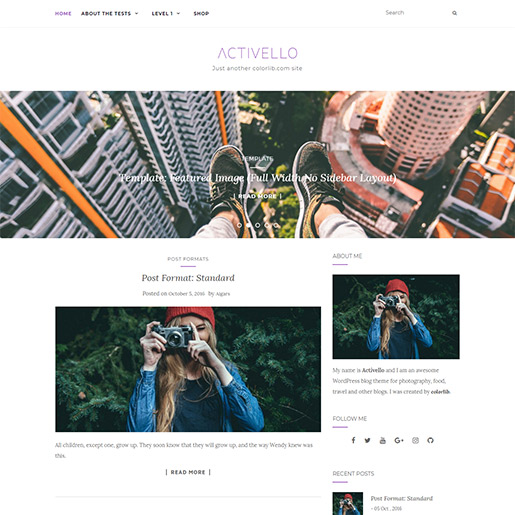 WordPress Travel theme-activello