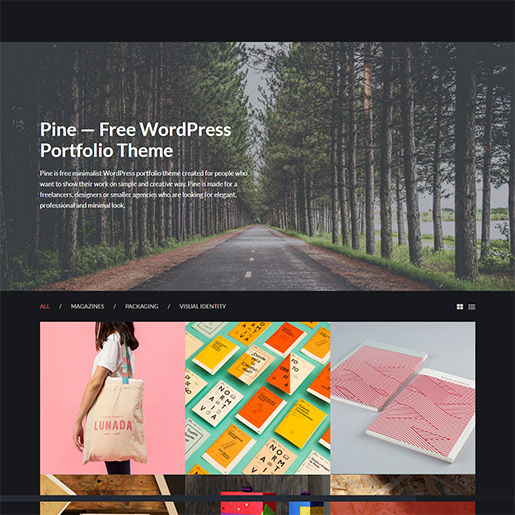 WordPress Travel theme-pine