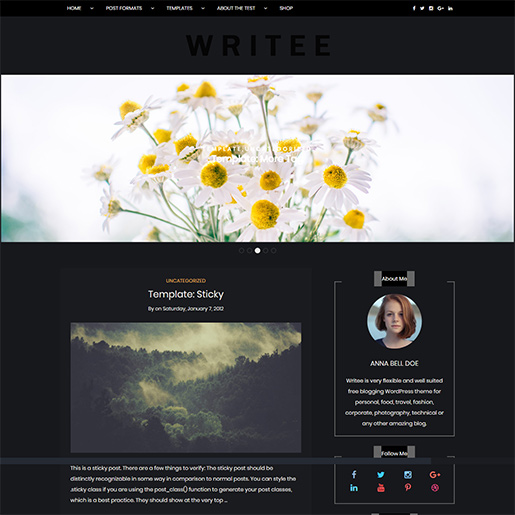 WordPress Travel theme-writee