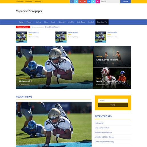 Adsense WordPress theme newspaper magazine