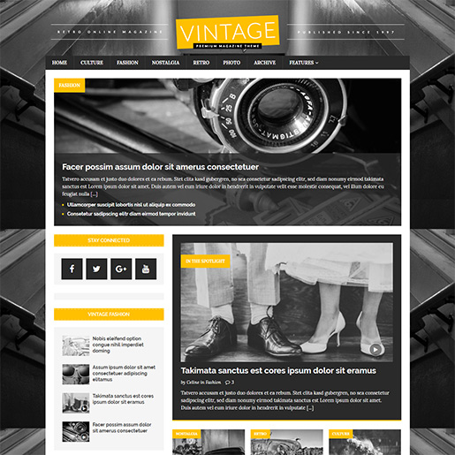 Retro WordPress Theme - Mh metromag