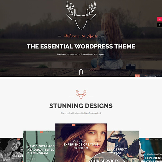 Retro WordPress Theme- Moose