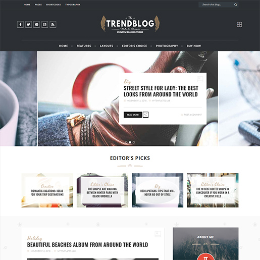 Retro WordPress Theme- Trendblog