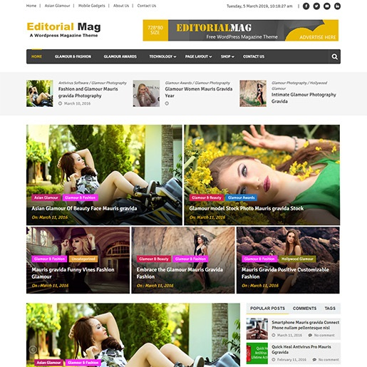 adsense wordpress theme EditorialMag