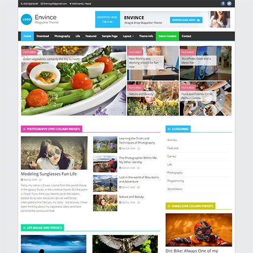 adsense wordpress theme Envince