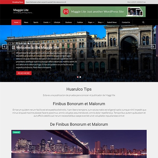 adsense wordpress theme Maggie Lite