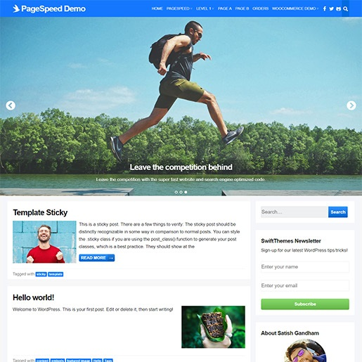 adsense wordpress theme PageSpeed