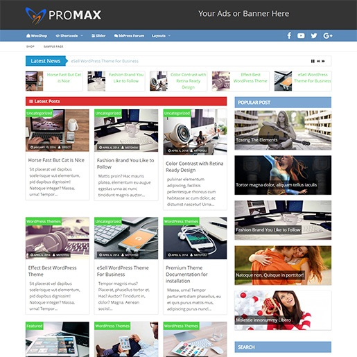 adsense wordpress theme Promax