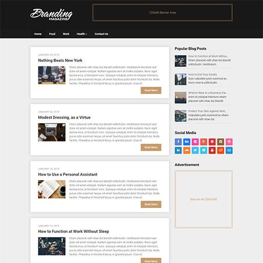 adsense wordpress theme Publishable Mag