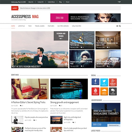 adsense wordpress theme accesspress
