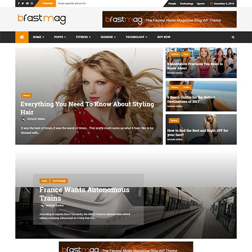 adsense wordpress theme bFastMag