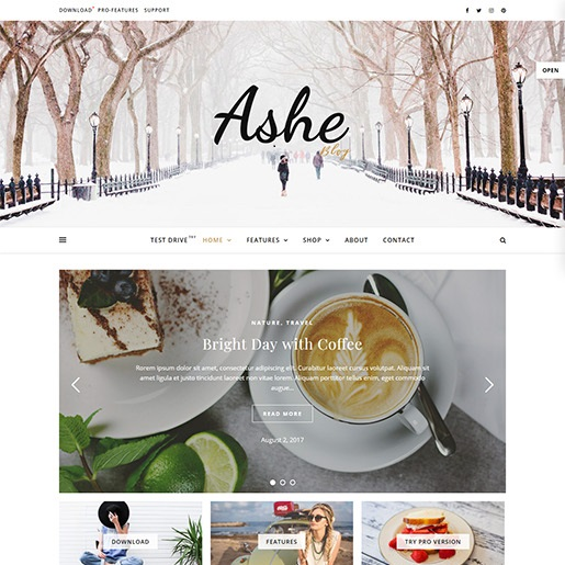 seo wordpress themes ashe