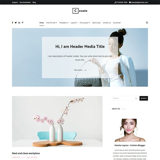 seo wordpress themes cenote