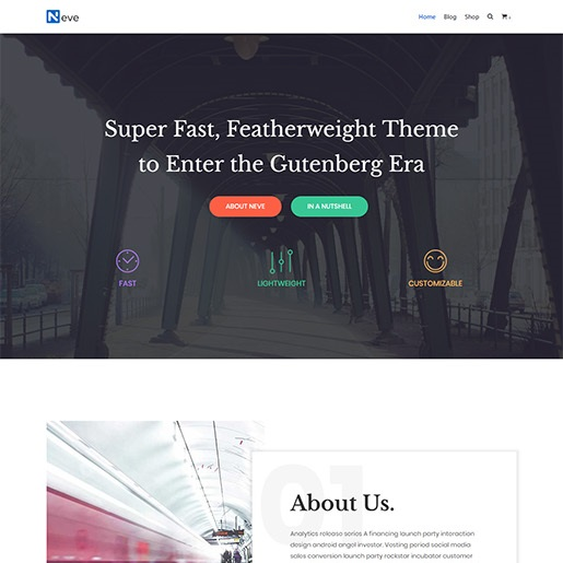 seo wordpress themes neve
