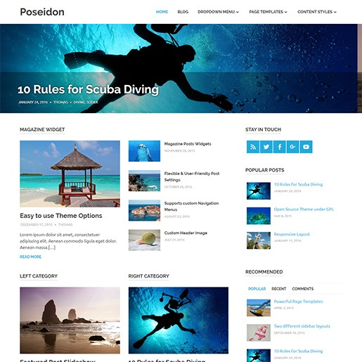 seo wordpress themes poseidon
