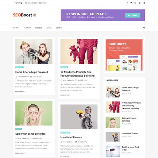 seo wordpress themes seoboost