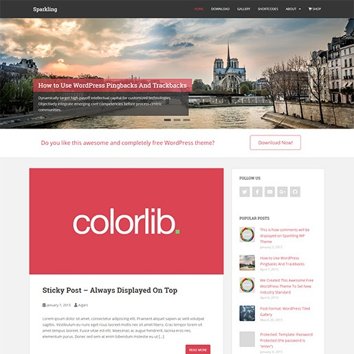 seo wordpress themes sparkling