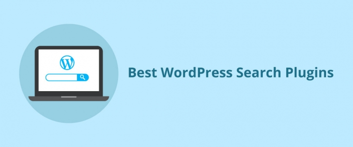 10 of the Best Free and Premium WordPress Search Plugins