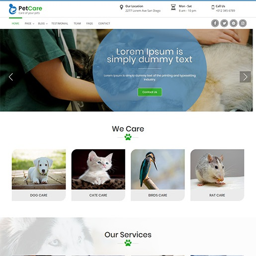 animal themes pet care clinic