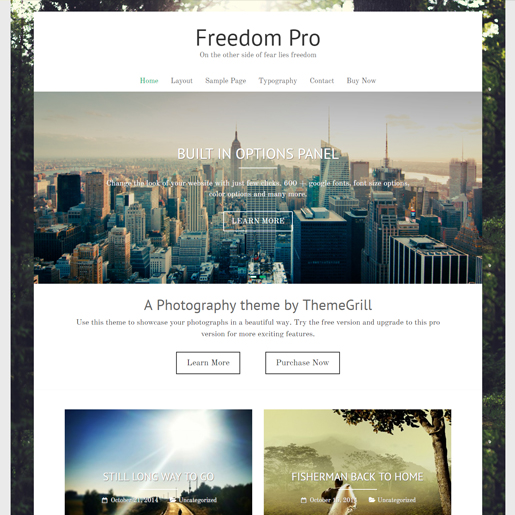 freedom wordpress drone themes