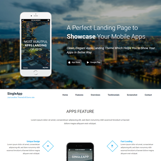 singleapp wordpress drone themes