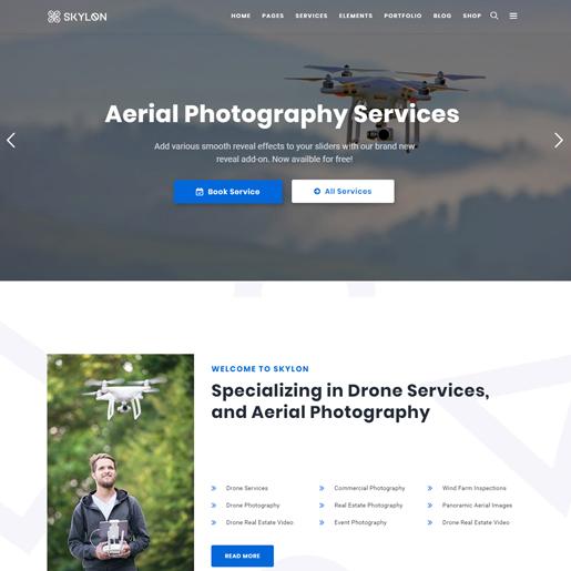 skylon wordpress drone themes