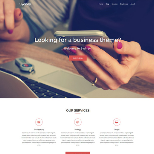 sydney-Professional-WordPress-Theme