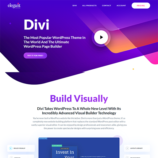 Divi Single Product WordPress Theme