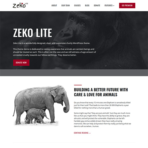Zeko-Lite-WordPress-Charity-Theme