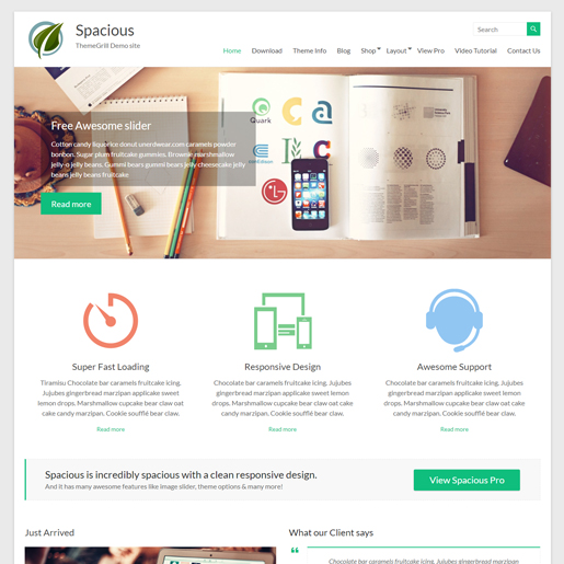spacious premium responsive wordpress themes