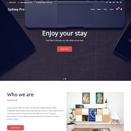 sydney pro premium responsive wordpress themes