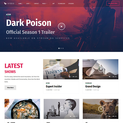 Viseo WordPress Theme
