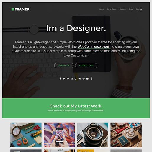 WordPress Resume Themes Free framer