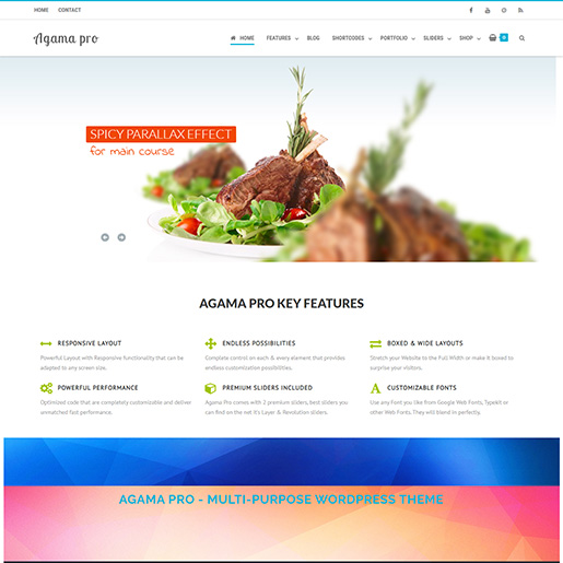free parallax wordpress themes - agama