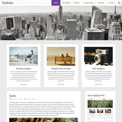 free parallax wordpress themes - radiate