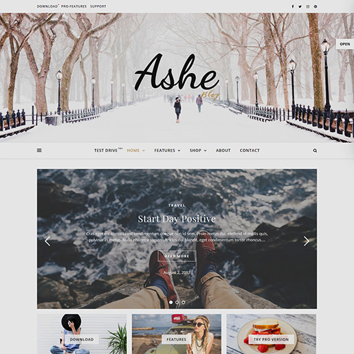 free clean WordPress themes ashe