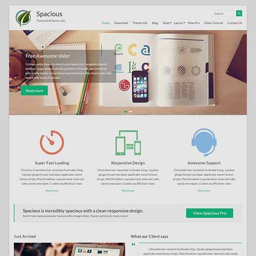 free Clean WordPress themes Spacious