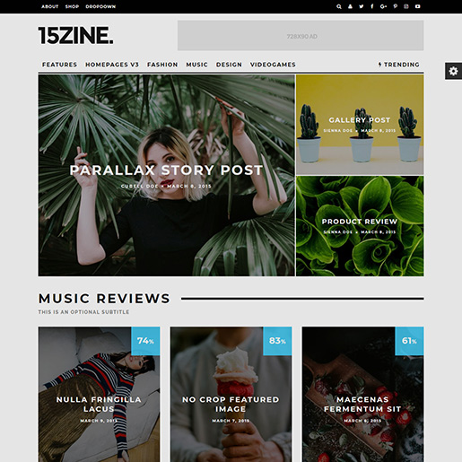 15Zine Beautiful WordPress Theme