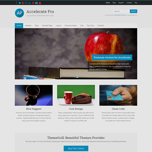 Best clean wordpress themes accelerate pro