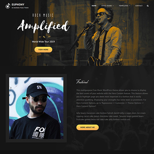 euphony-wordpress-music-theme
