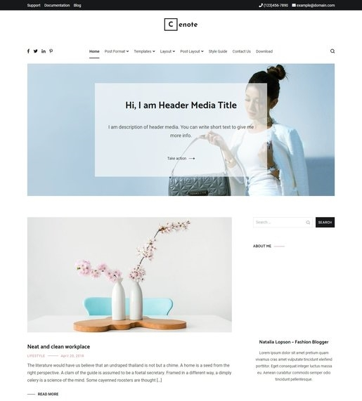Best Accessibility WordPress Theme- Cenote WordPress Theme