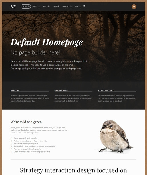 Monument WordPress Theme-Best Accessibility WordPress Theme