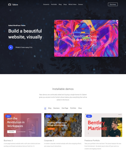 Salient WordPress Theme-Best Accessibility WordPress Theme