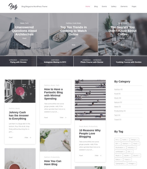 Yvy WordPress Theme-Best Accessibility WordPress Theme