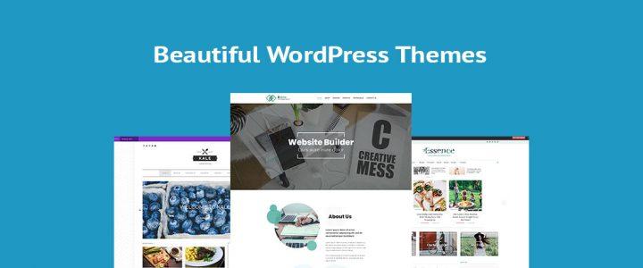 20+ Elegant Beautiful WordPress Themes for 2020
