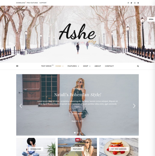 Free WordPress Themes with Slider - Ashe
