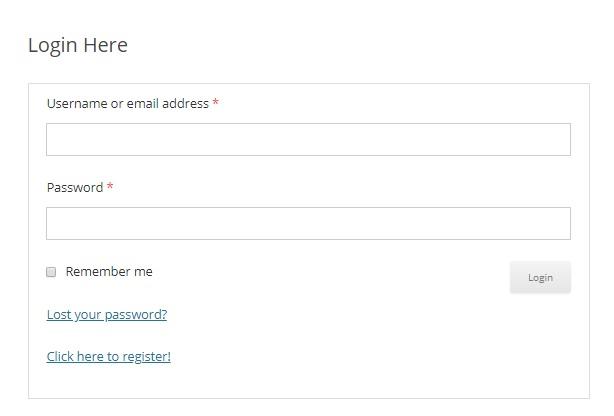 custom-login-page-login-form