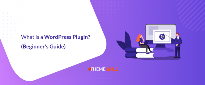 What is a WordPress Plugin? (Definitive Guide for Beginners)